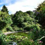 Little Oak Camping-Pond