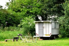 Little Oak Camping- Glamping Caravan